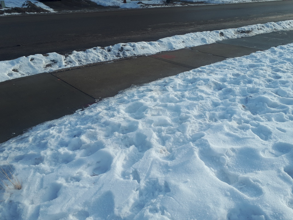 Outdoor sidewalk shovelled clearly of snow during winter.